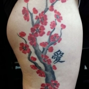 hip plum blossoms